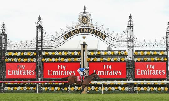 horse racing at Flemington racecourse