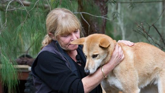 woman with dingo